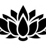 瞑想についてよく聞かれることへのお答え